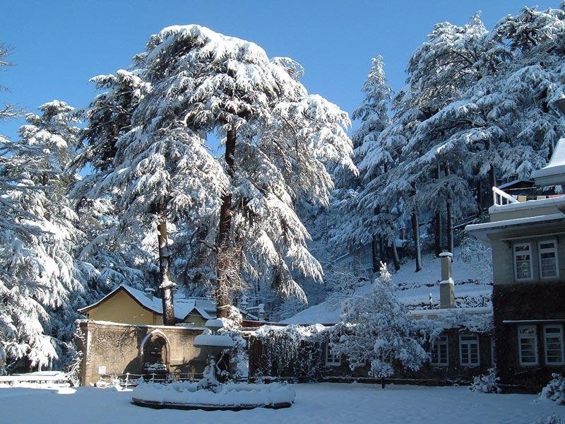 Shimla pic