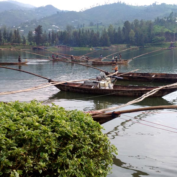 Fishin in Kivu Lake