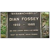 Diana Fossey's Tombs