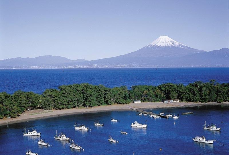 Mt. fuji with Lake Ashi